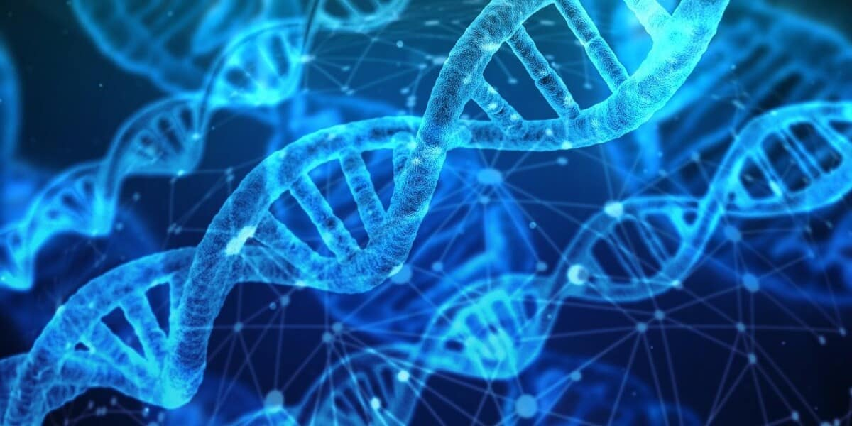 Why DNA Replication Needs to Occur