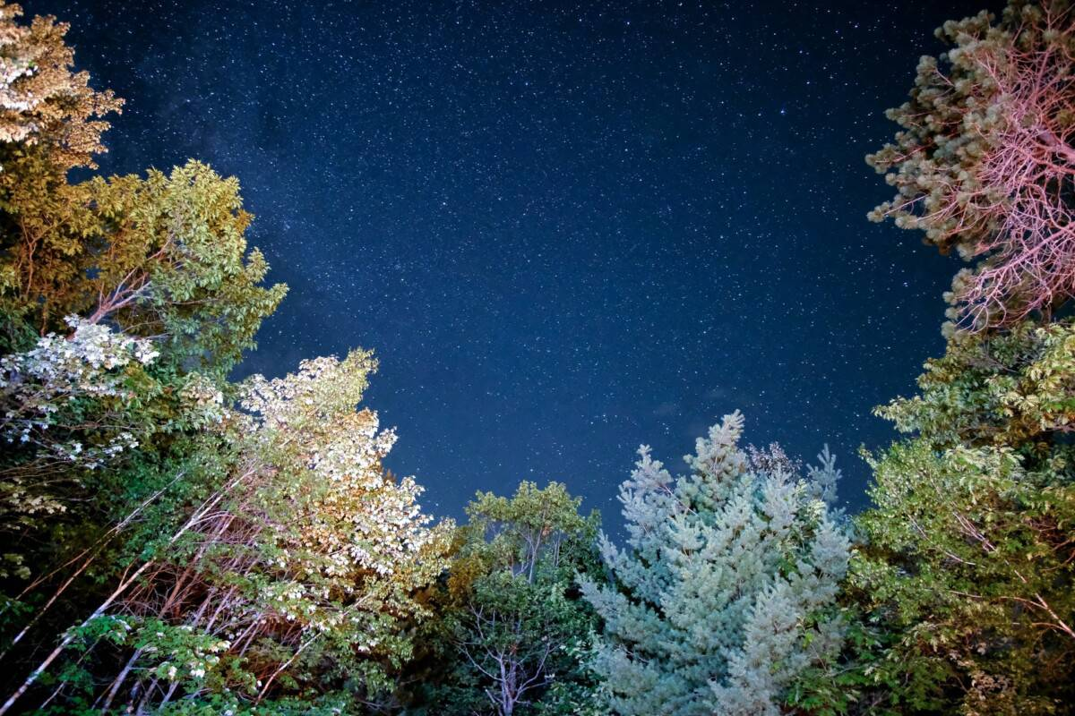 Nighttime or Night Time: Which Is Correct?
